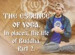 The Essence of Yoga. In places, the life of Buddha. Part 2