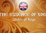 The Essence of Yoga. Styles of Yoga