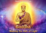 Buddha: Walking the Path of Light